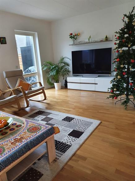 """Big 65"""" Philips Android TV (included in the rent)"""