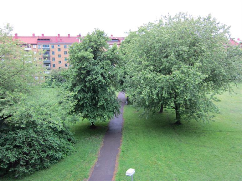Utsikt mot Gubberoparken.