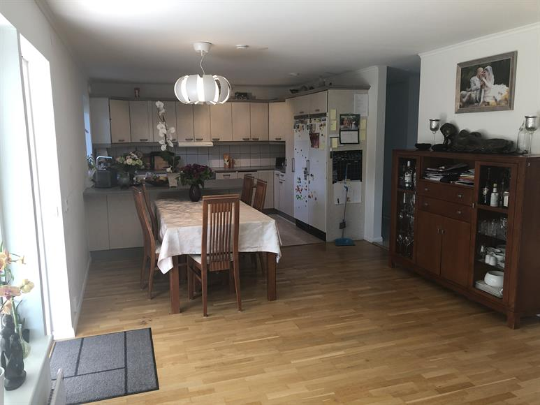Kitchen and dinner table.